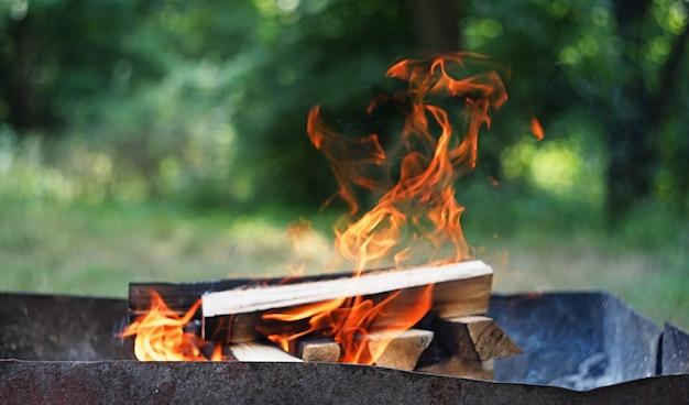 Fogo, chamas de madeira brasa para churrasqueira ou churrasco piquenique, fumaça e lenha ao ar livre
