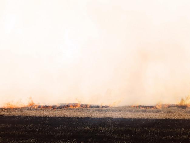 Fogo e fumaça no campo.