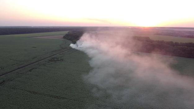 Fogo em aterro com lixo perto de campos agrícolas. fume em um fundo do sol.
