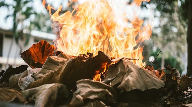 Fogo feito com folhas mortas em um campo no campo, na limpeza de primavera com fumaça