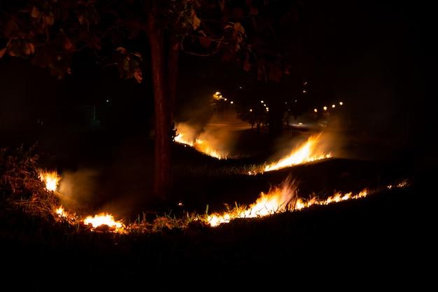 Fogo sobre o lado selvagem da estrada, a chama da queima da noite