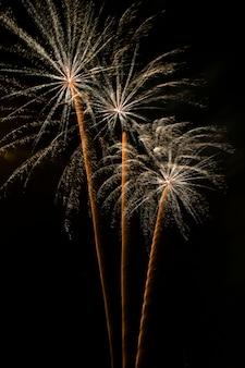 Fogos de artifício à noite, castelos de fogo