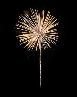 Fogos de artifício amarelos no céu noturno