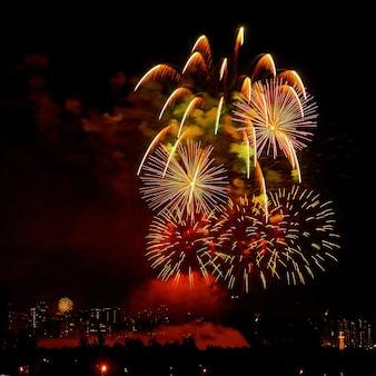 Fogos de artifício coloridos e brilhantes comemorativos em um céu noturno