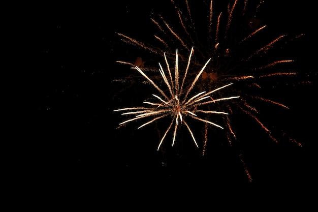 Fogos de artifício coloridos no céu preto. dia da independência, quatro de julho.