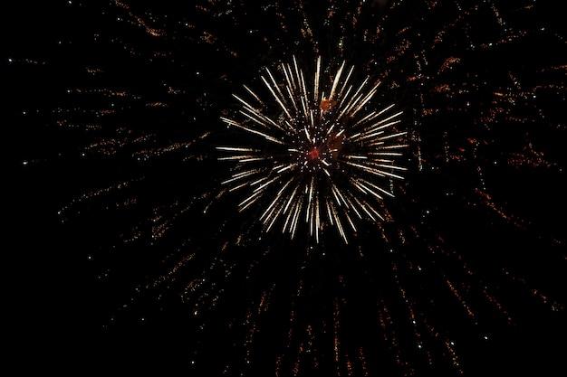 Fogos de artifício coloridos no fundo do céu preto