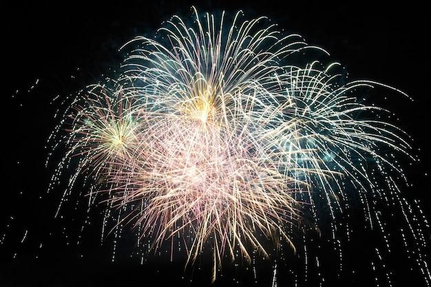 Fogos de artifício de férias coloridos vermelhos e roxos no fundo do céu negro.