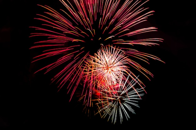 Fogos-de-artifício festivos isolados impressionantes em uma obscuridade.