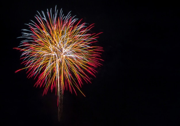 Fogos de artifício no céu escuro