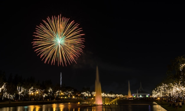 Fogos de artifício no parque da cidade