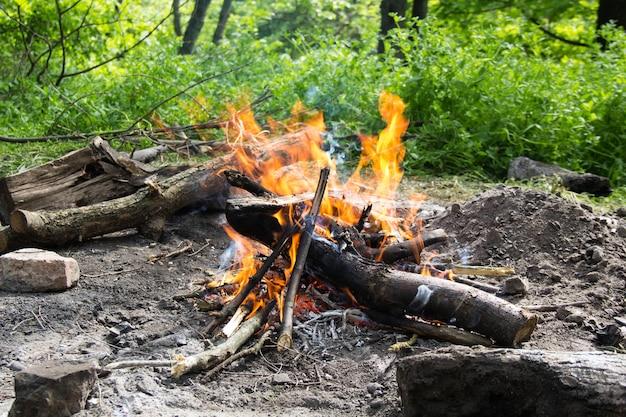 Fogueira de fogo brilhante na floresta de primavera.