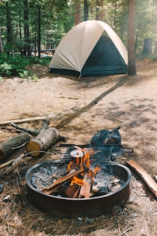 Fogueira e um acampamento em uma floresta definida por caminhantes