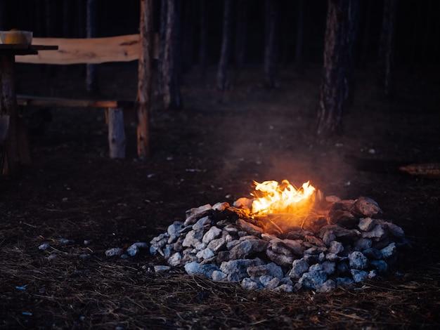 Fogueira na natureza perto do descanso noturno da floresta