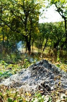Fogueira queimada no jardim, trabalho de outono, fumaça azul sobre as cinzas