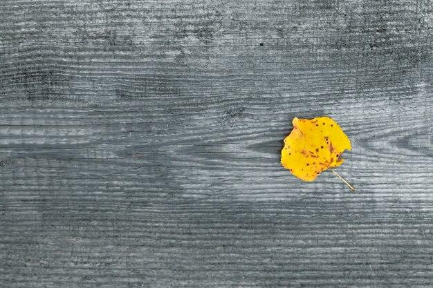 Folha amarela em um cinza de madeira. outono, solidão. vista de cima. copyspace.