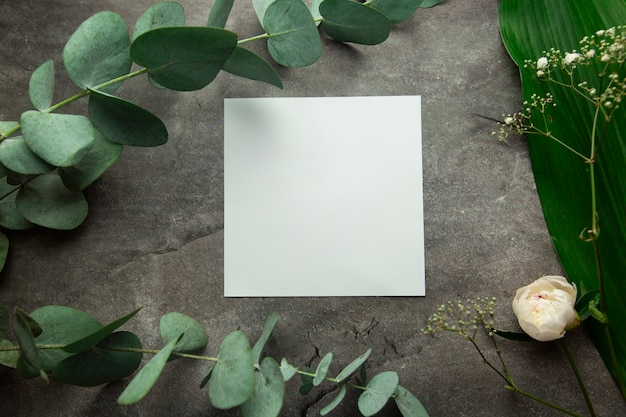 Folha branca em branco com lugar para texto em fundo cinza com folhas de plantas e raminhos de eucalipto