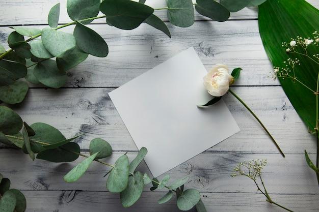 Folha branca em branco com lugar para texto em um fundo claro com plantas, folhas, flores e ramos de eucalipto, vista de cima