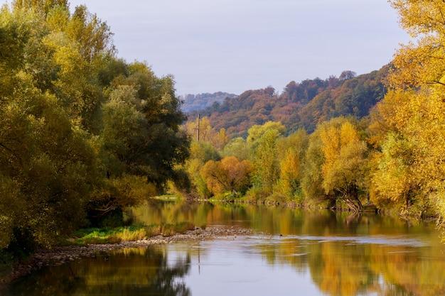 Folha colorida do outono sobre o lago com madeiras bonitas na cor vermelha e amarela.
