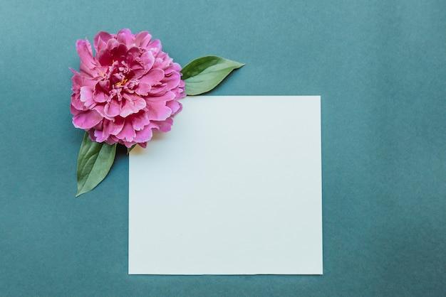 Folha de bloco de notas em branco e peônia cor de vinho plana sobre fundo azul