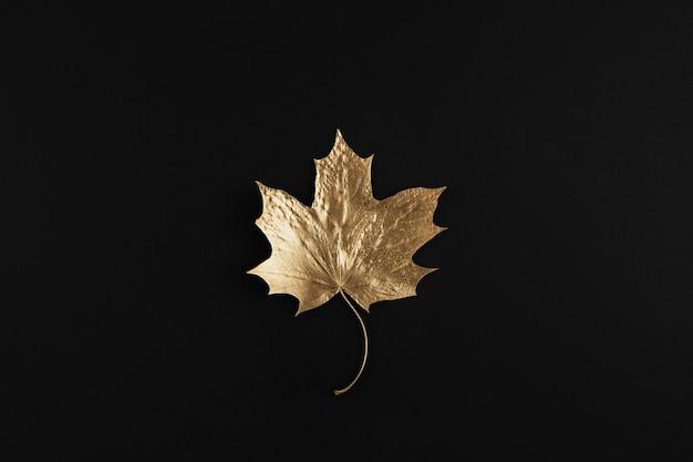 Folha de bordo dourada brilhante em fundo preto