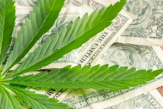 Folha de cannabis e dinheiro