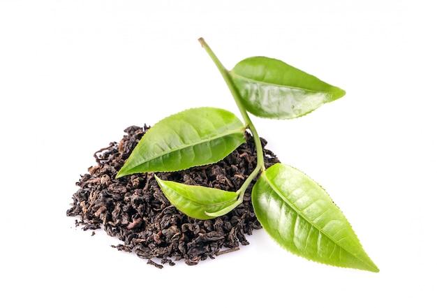 Folha de chá verde isolada no espaço em branco