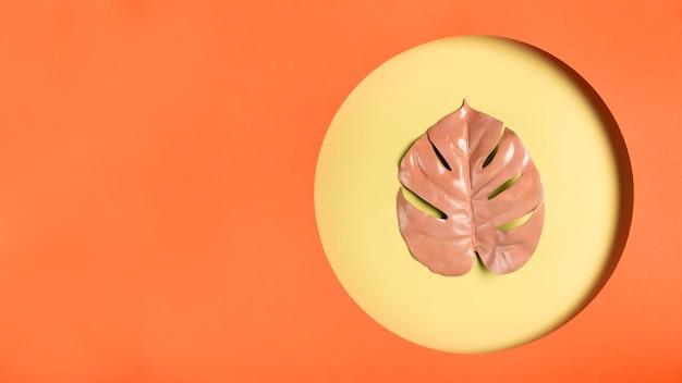 Folha de laranja no quadro com espaço de cópia