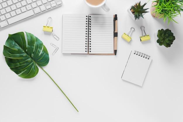 Folha de monstera; vasos de plantas e artigos de papelaria do escritório no fundo branco