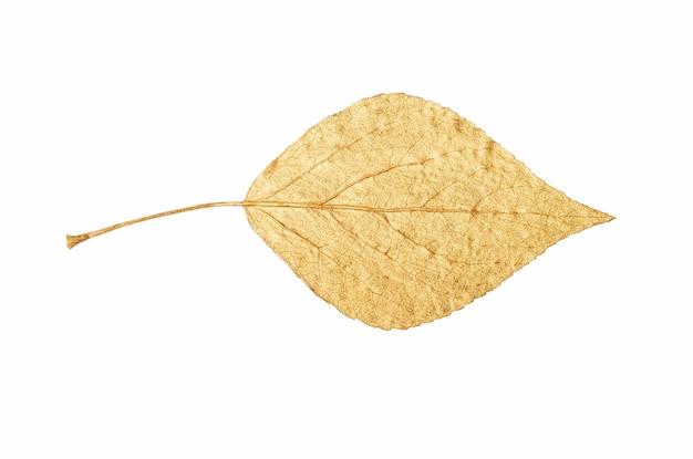 Folha de ouro isolada em fundo branco