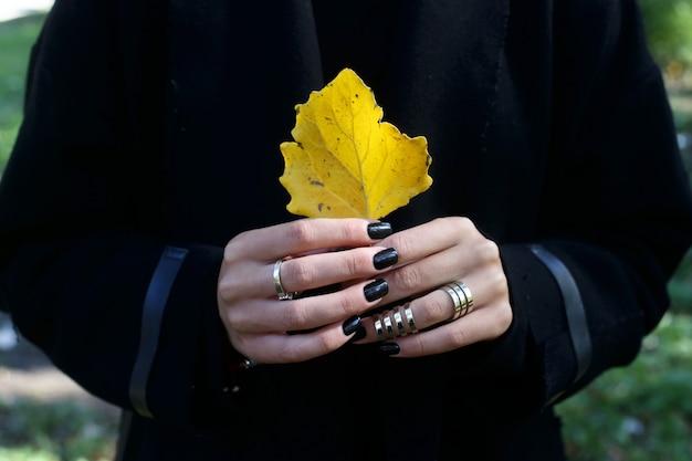Folha de outono amarela em mãos femininas com manicure preto e elegantes anéis