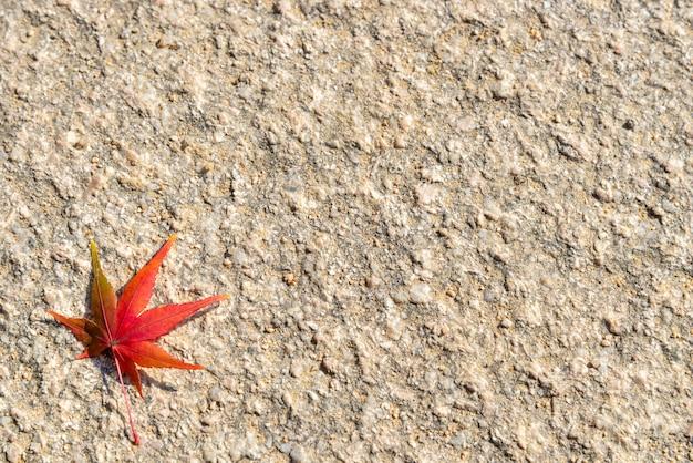 Folha de outono colorida no fundo áspero com espaço de cópia