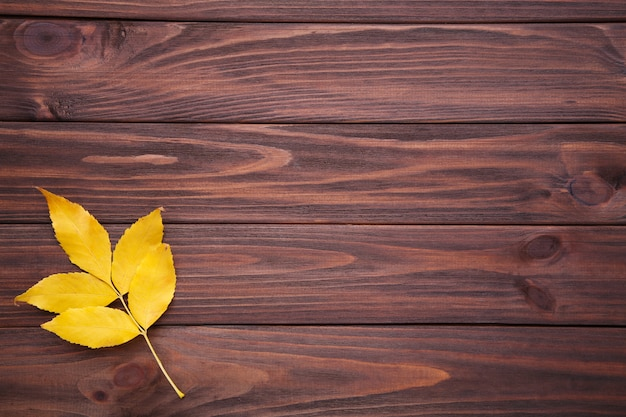 Folha de outono com bagas em um fundo marrom