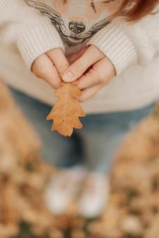 Folha de outono nas mãos de uma garota de jeans e um suéter branco segurando uma folha nas mãos