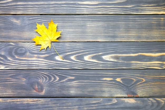 Folha de outono real deitada sobre fundo de madeira. foto sazonal. cores amarelas e verdes com textura. copie o lugar do espaço. cartão postal de novembro.
