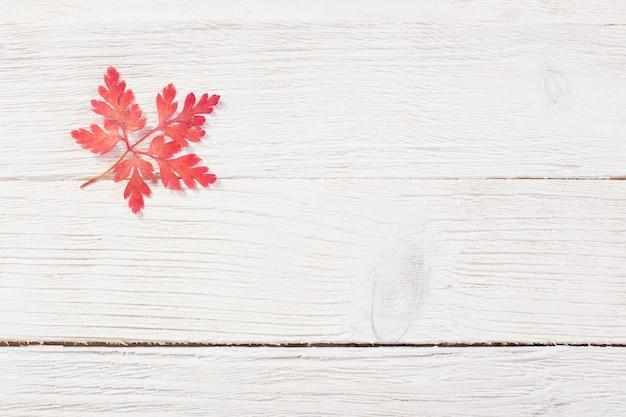 Folha de outono rosa em madeira velha darrk