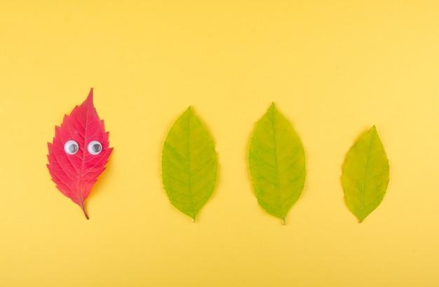 Folha de outono vermelha olhando folhas verdes