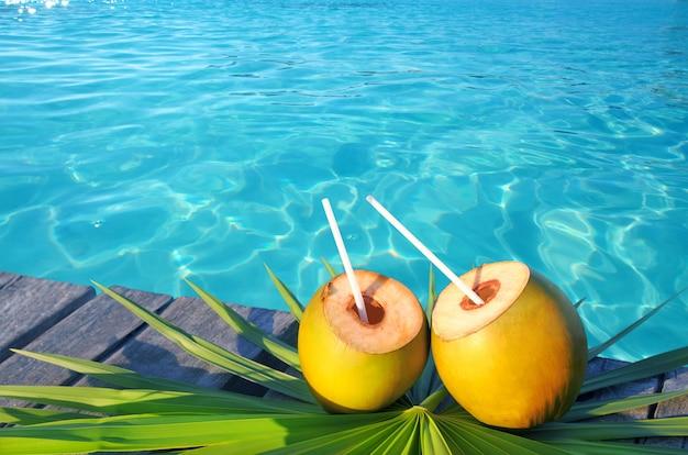Folha de palmeira cocktail de coco no caribe
