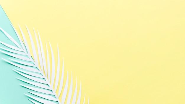 Folha de palmeira de papel na mesa brilhante