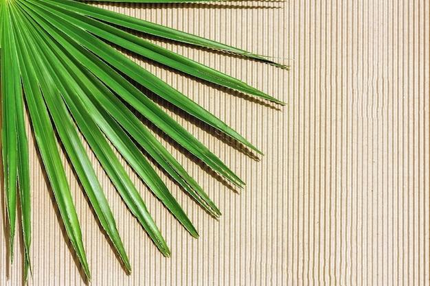 Folha de palmeira em fundo de textura de papel kraft.