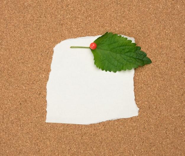 Folha de papel branca em branco rasgada afixada com um botão de plástico em uma placa de cortiça marrom, copie o espaço