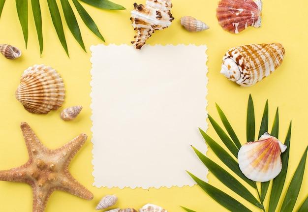 Folha de papel em branco com estrela do mar e conchas