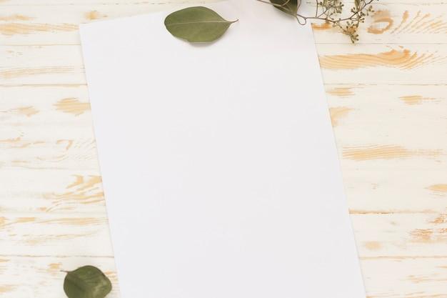 Folha de papel em branco vista superior