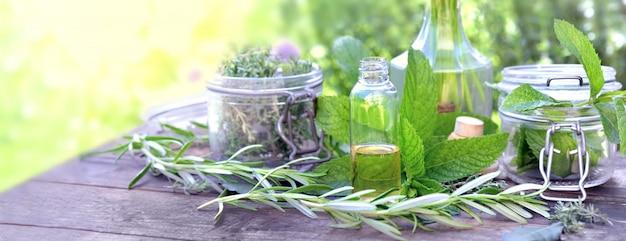 Folha de planta aromática com frasco de vidro e óleo em uma garrafa disposta sobre uma mesa em um jardim