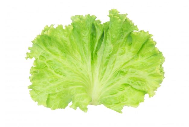 Folha de salada. alface isolada no branco com traçado de recorte