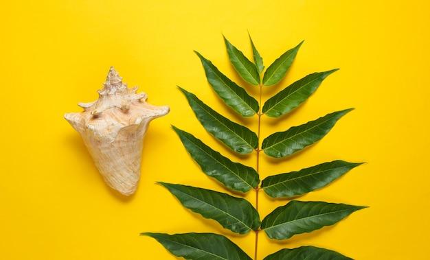 Folha de samambaia verde, conchas em fundo amarelo.