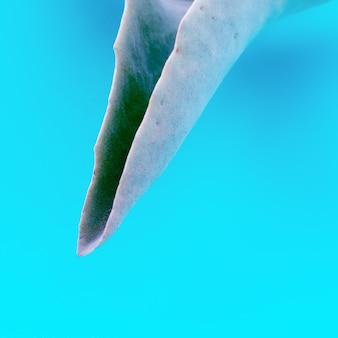 Folha de uma planta em abstrato. detalhes mínimos