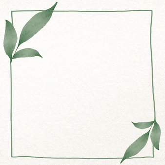 Folha moldura quadrada em aquarela verde