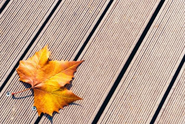 Folha seca do outono no chão de madeira com espaço da cópia.