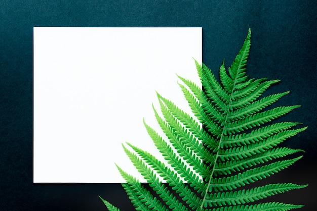 Folha tropical com papel em branco