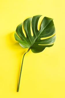 Folha tropical monstera isolada em amarelo. férias de verão. formato vertical.